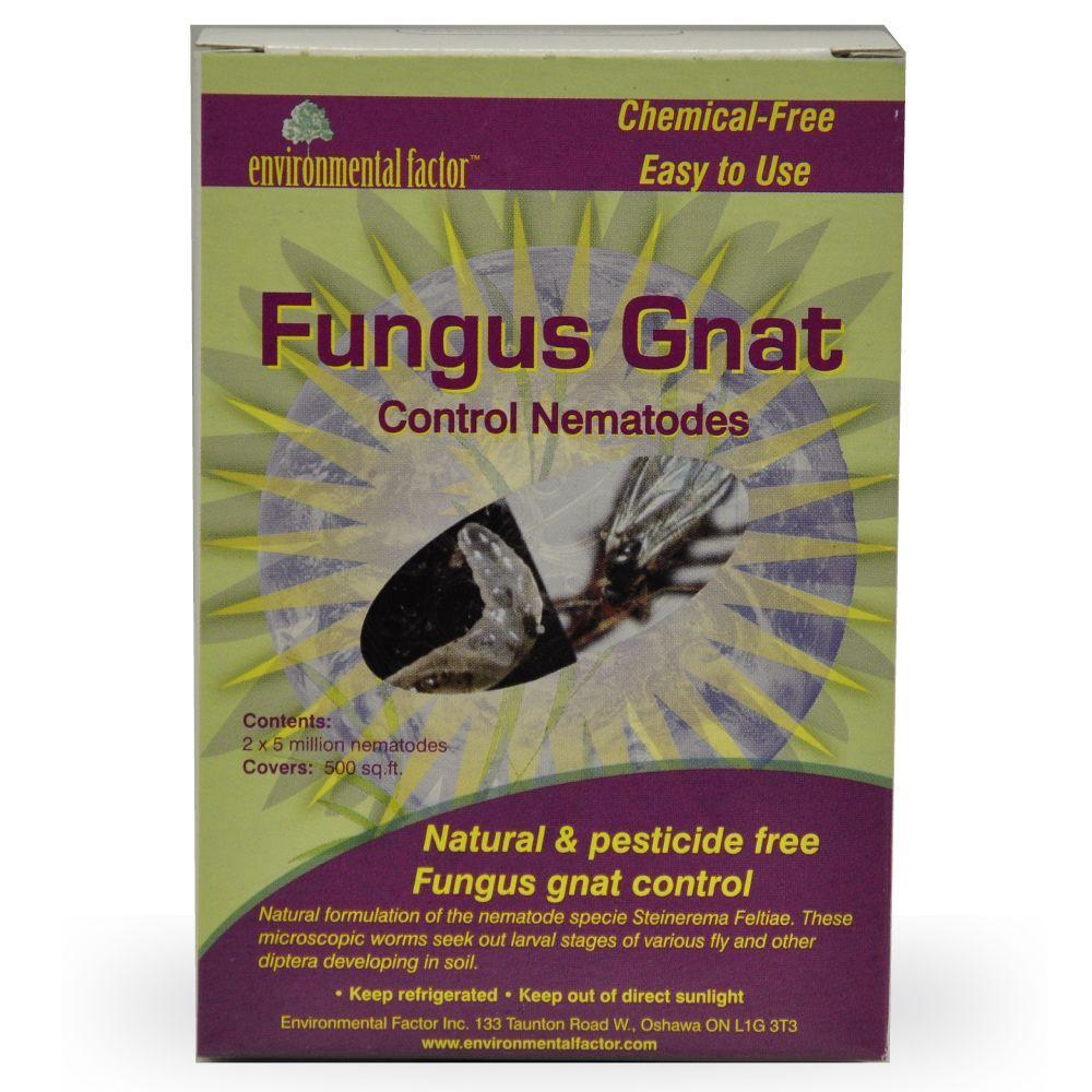 Fungus Gnat Control Nematodes