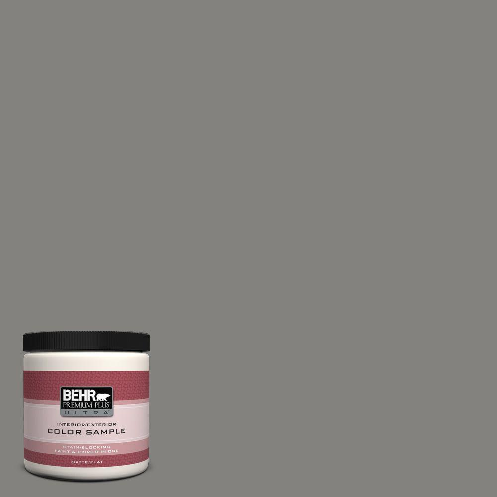 8 oz. #BNC-25 Gray Pepper Interior/Exterior Paint Sample