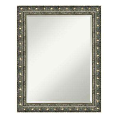 Barcelona Champagne Wood 22 in. x 28 in. Traditional Bathroom Vanity Mirror