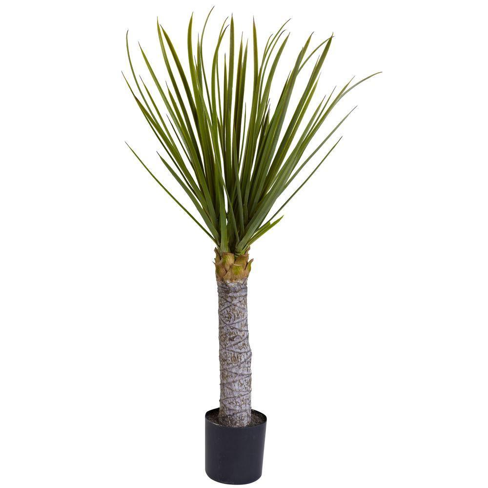 3 ft. Yucca Tree