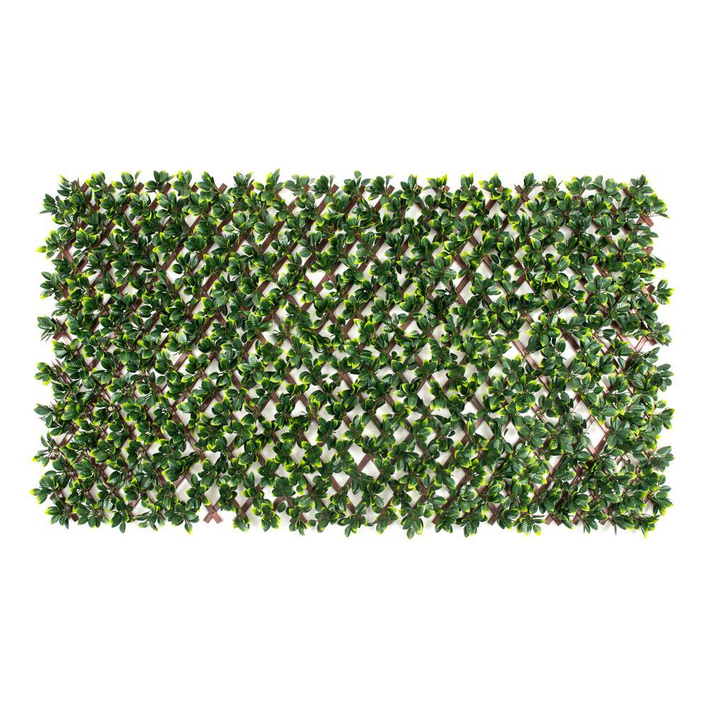 Naturae Decor Privahedge Expandable Brown Trellis w/Gardenia Leaf