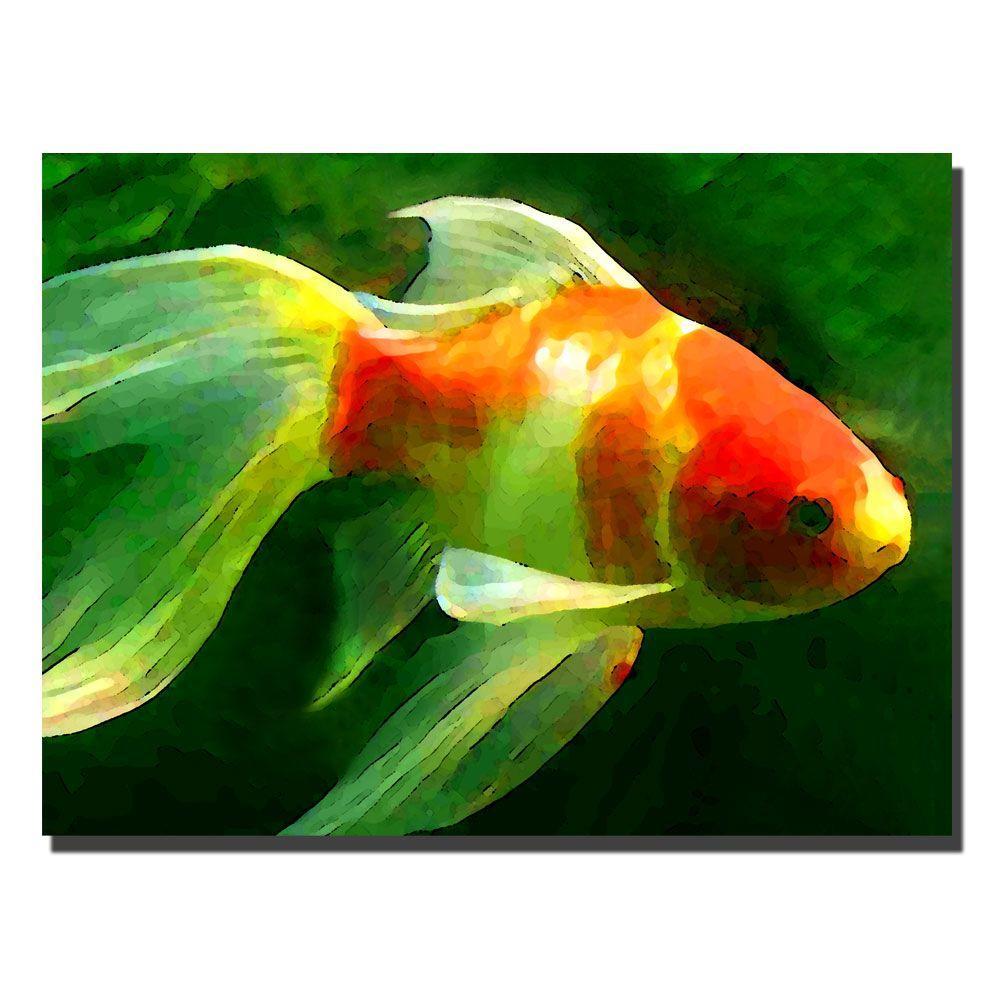Trademark Fine Art 24 in. x 32 in. Goldfish Canvas Art-AV003-C2432GG ...