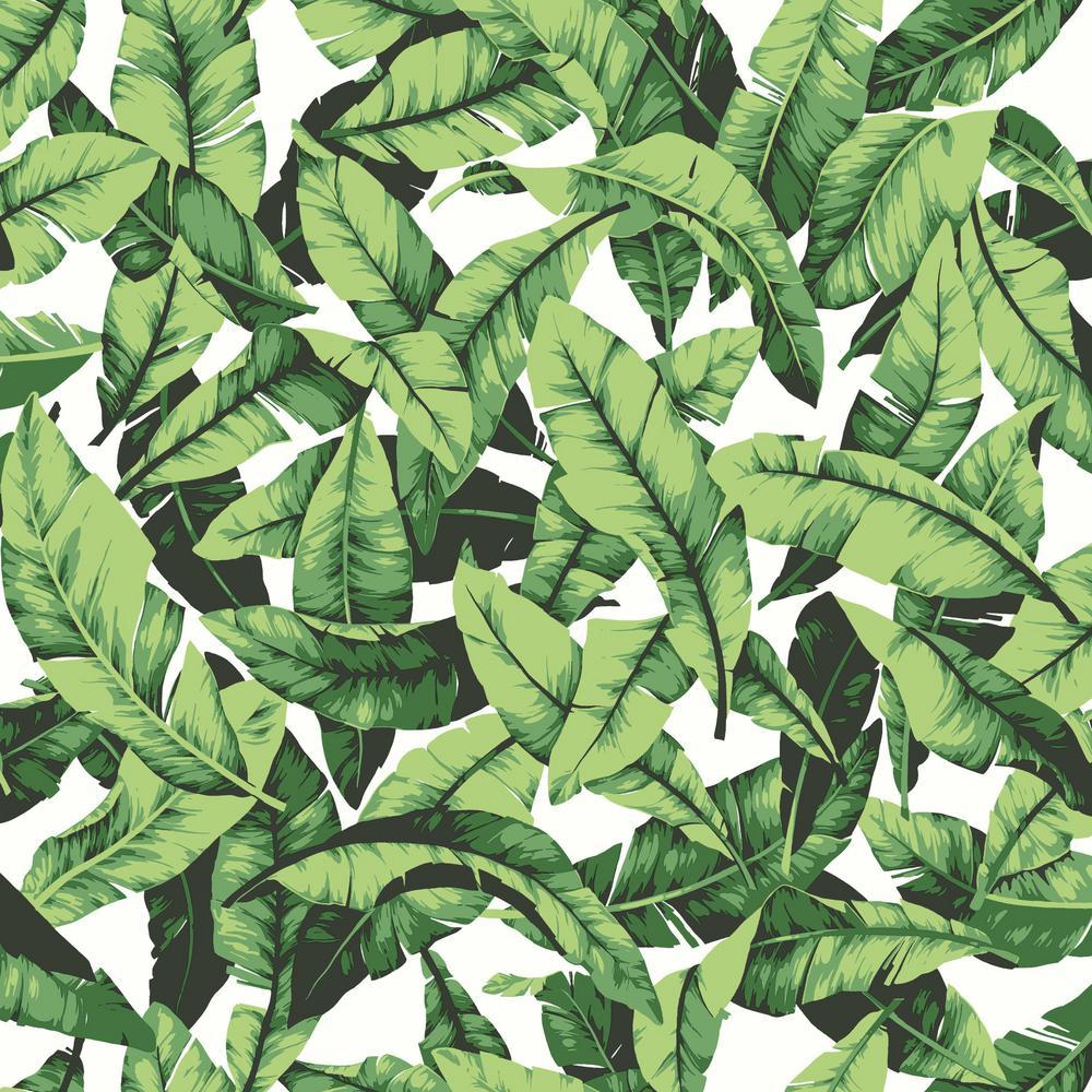 Tropical Leaf Vinyl Peelable Wallpaper (Covers 28.18 sq. ft.)