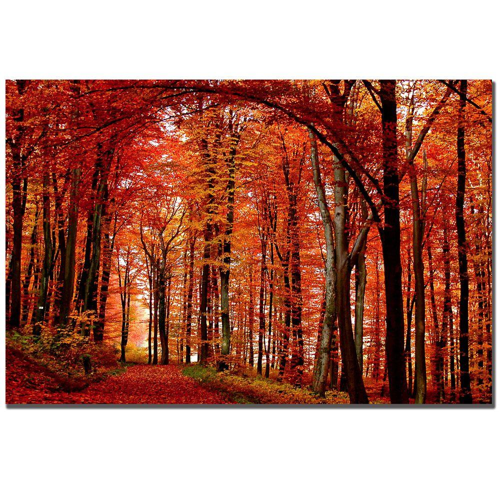 Trademark Fine Art 30 in. x 47 in. The Red Way Canvas Art