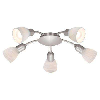 Dakar 1-5-Light Matte Nickel Ceiling Light