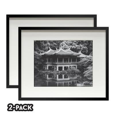Classic Gallery Double Pack Black Frame 16 in. x 20 in. Mat to 11 in. x 14 in.