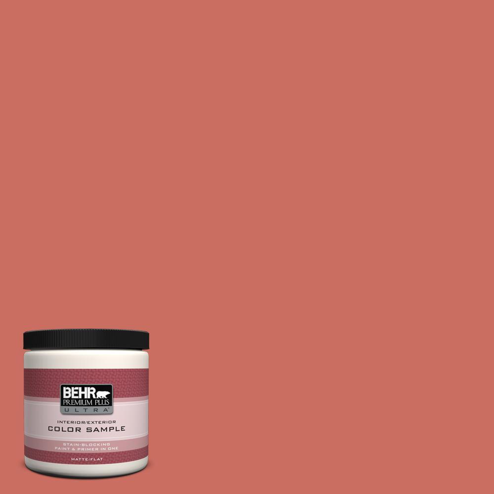 BEHR Premium Plus Ultra 8 oz. #M170-6 Dash of Curry Interior/Exterior Paint Sample