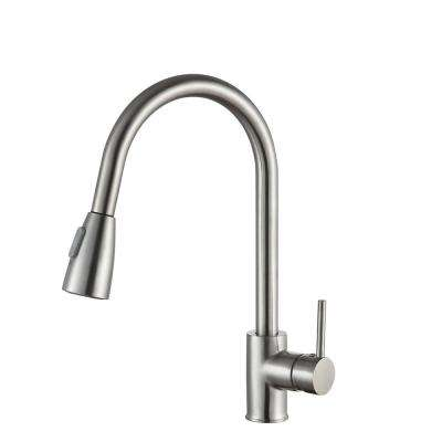 Sire Single Handle Standard Kitchen Faucet in Brushed Nickel