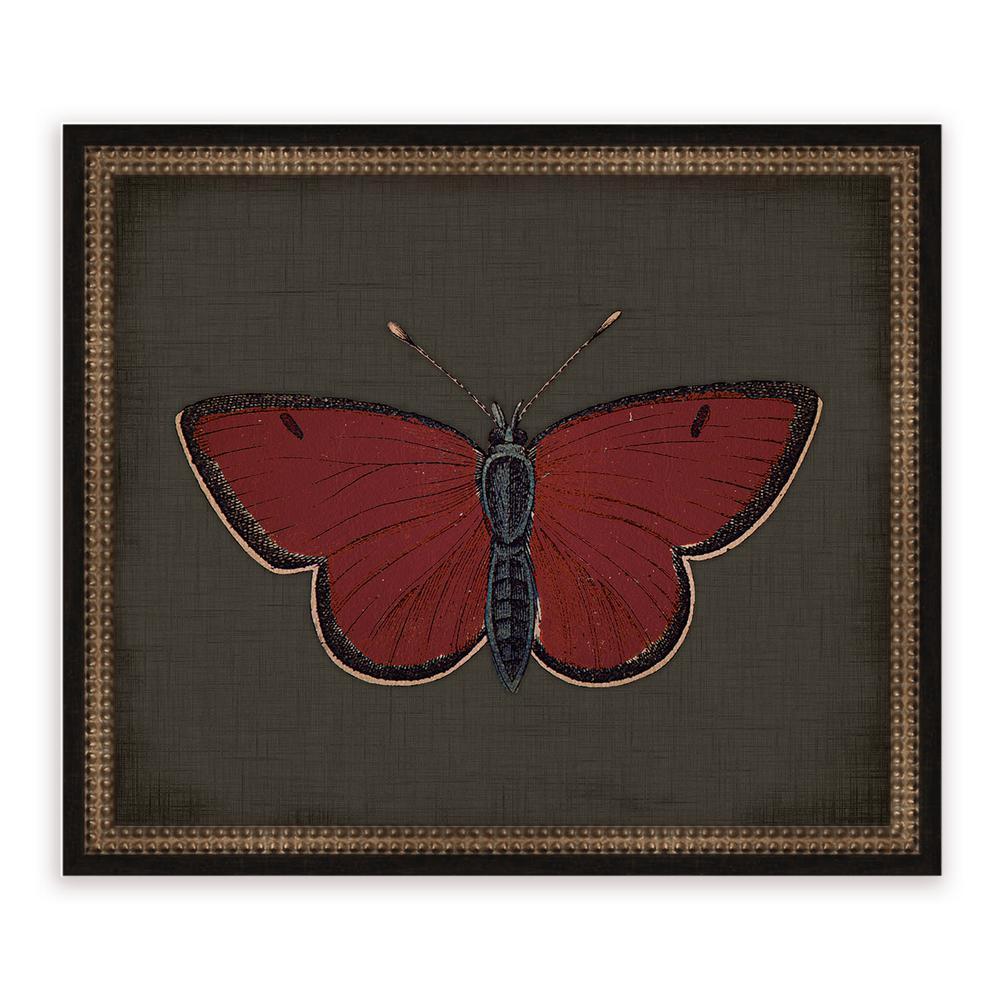 21 in. x 18 in. ''Butterflies on Black II'' Framed Giclee