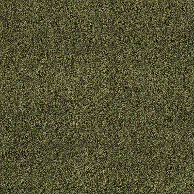 Carpet Sample - Toulon - In Color Spanish Moss Texture 8 in. x 8 in.
