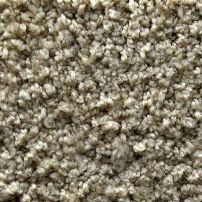 Carpet Sample - Fashion Feature - Color Leola Pattern 8 in. x 8 in.