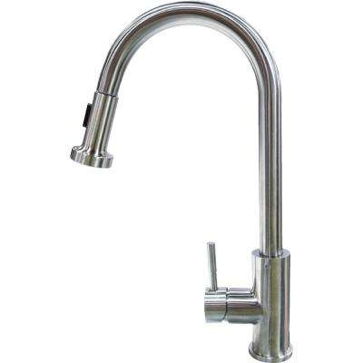 Flow Max RV Kitchen Faucet - Pull Down Sprayer Shaped
