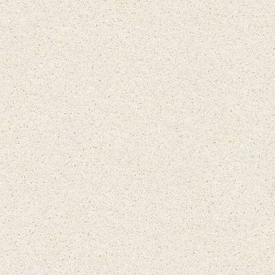 Plume Perfect Ostrich Texture 24 in. x 24 in. Carpet Tile (4 Tiles/Case)