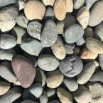1 in. to 2 in. Mixed Mexican Beach Pebble (500 lbs. Mini Sack)