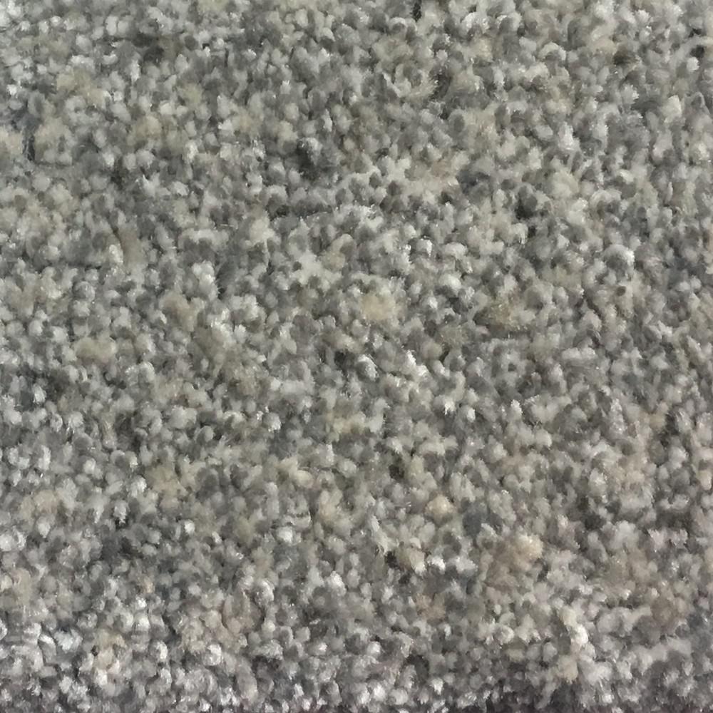 Carpet Sample - Calypso II - Color Zeus Texture 8 in. x 8 in.
