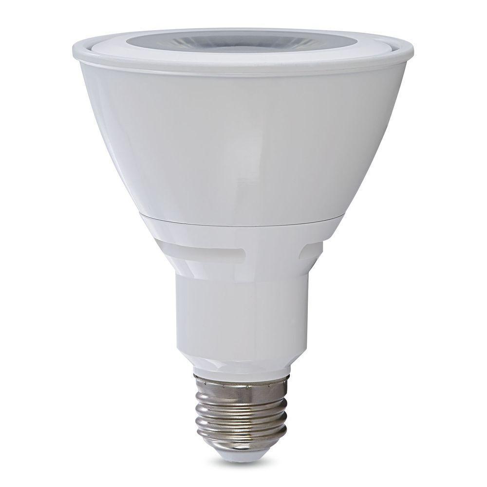 75W Equivalent Warm White PAR30 LED Flood Light Bulb