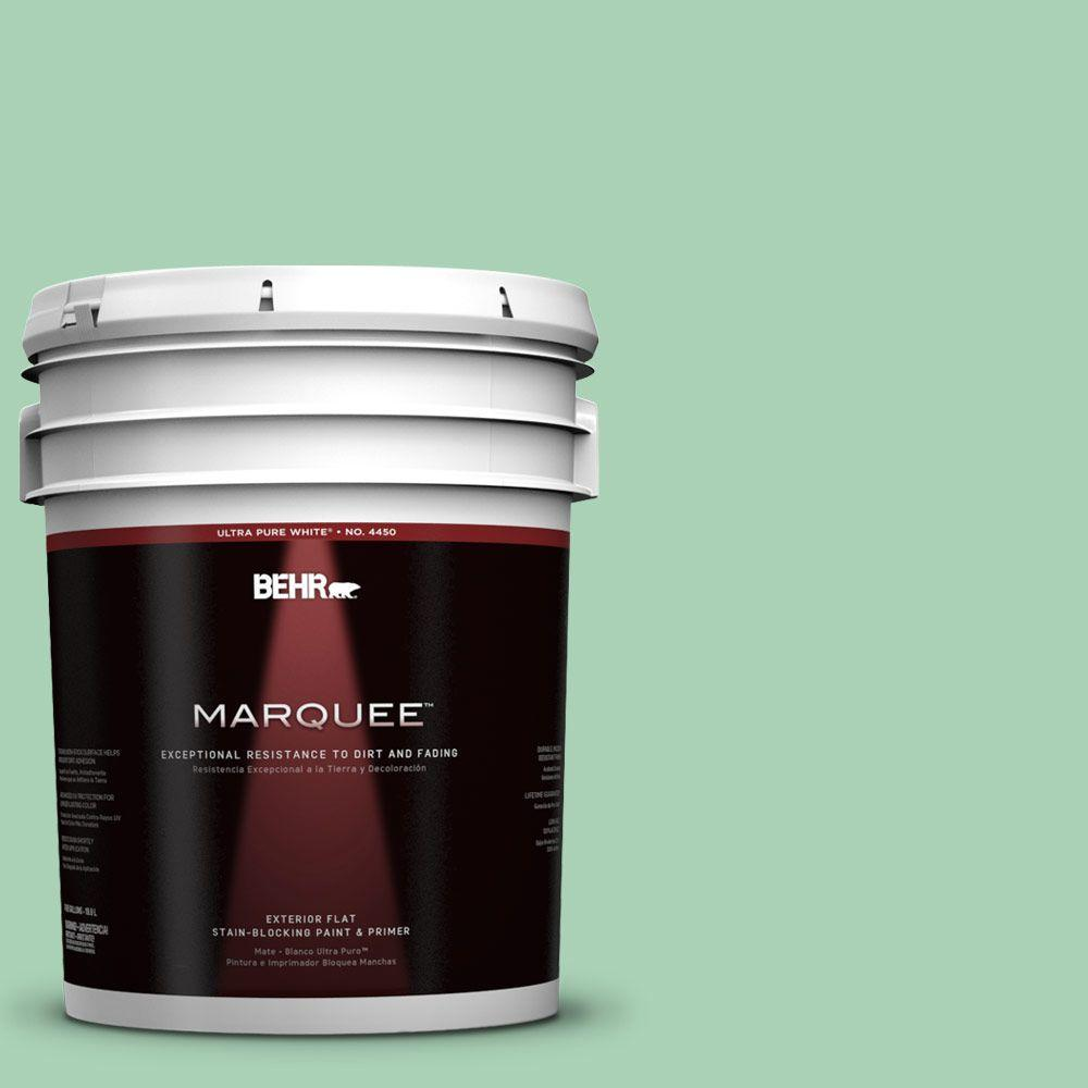 BEHR MARQUEE 5-gal. #460D-4 Aloe Essence Flat Exterior Paint