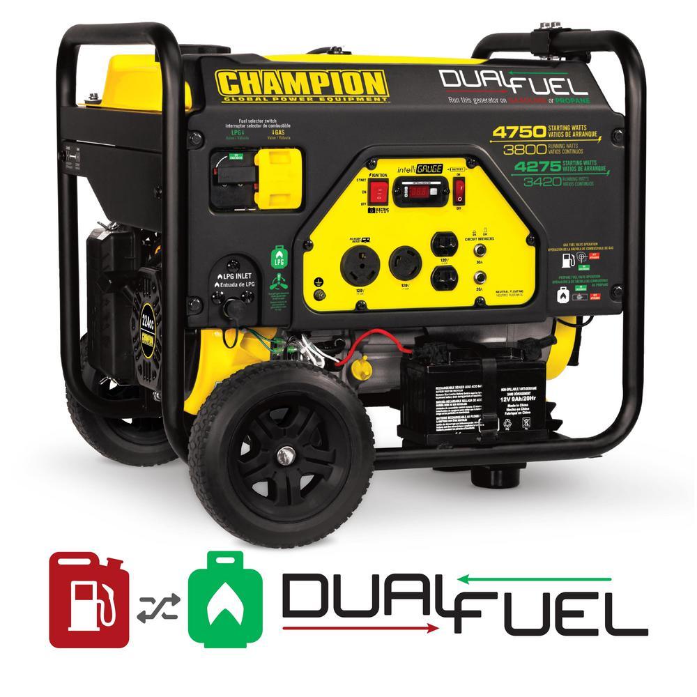 3,800-Watt Dual Fuel Powered Portable Generator