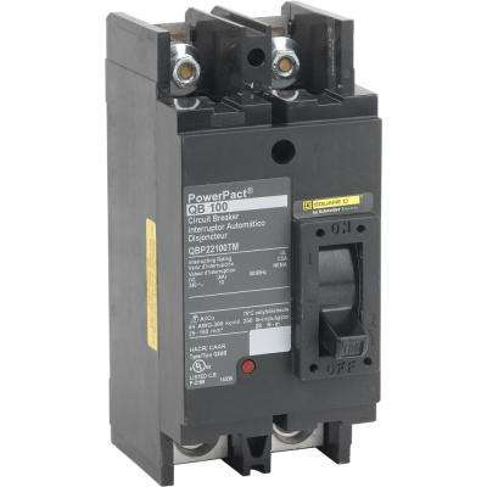 PowerPact 100 Amp 10kA 2-Pole Q-Frame Molded Case Circuit Breaker