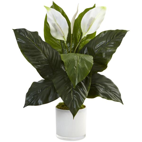 Nearly Natural Indoor Spathiphyllum Artificial Flowering Peace Lily In Glossy Glass Planter 6956 The Home Depot