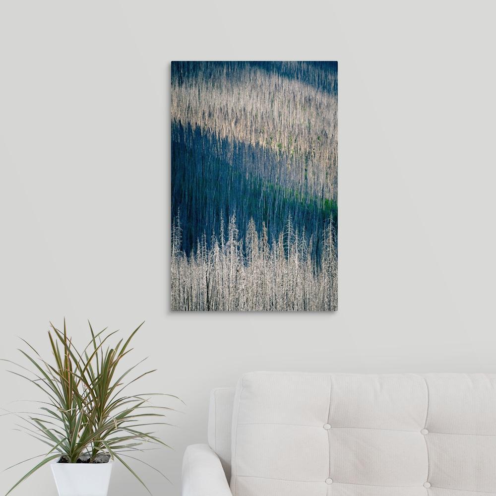 """""""Light and Shadow"""" by Ursula Abresch Canvas Wall Art"""
