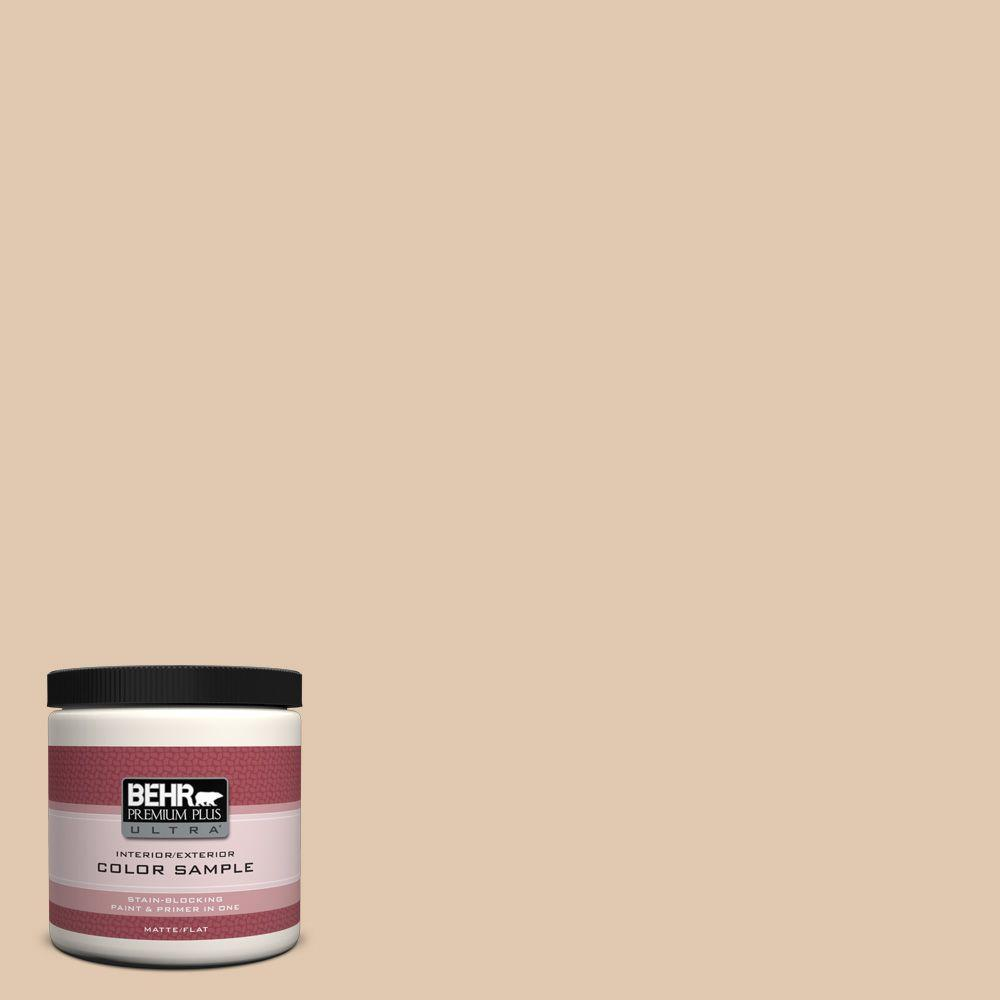 8 oz. #N260-2 Almond Latte Interior/Exterior Paint Sample