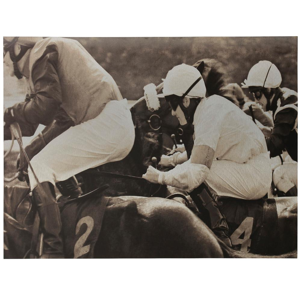 StyleCraft Belmont Jockeys Traditional Equestrian Wooden Wall Art, Multicolored was $273.99 now $111.92 (59.0% off)