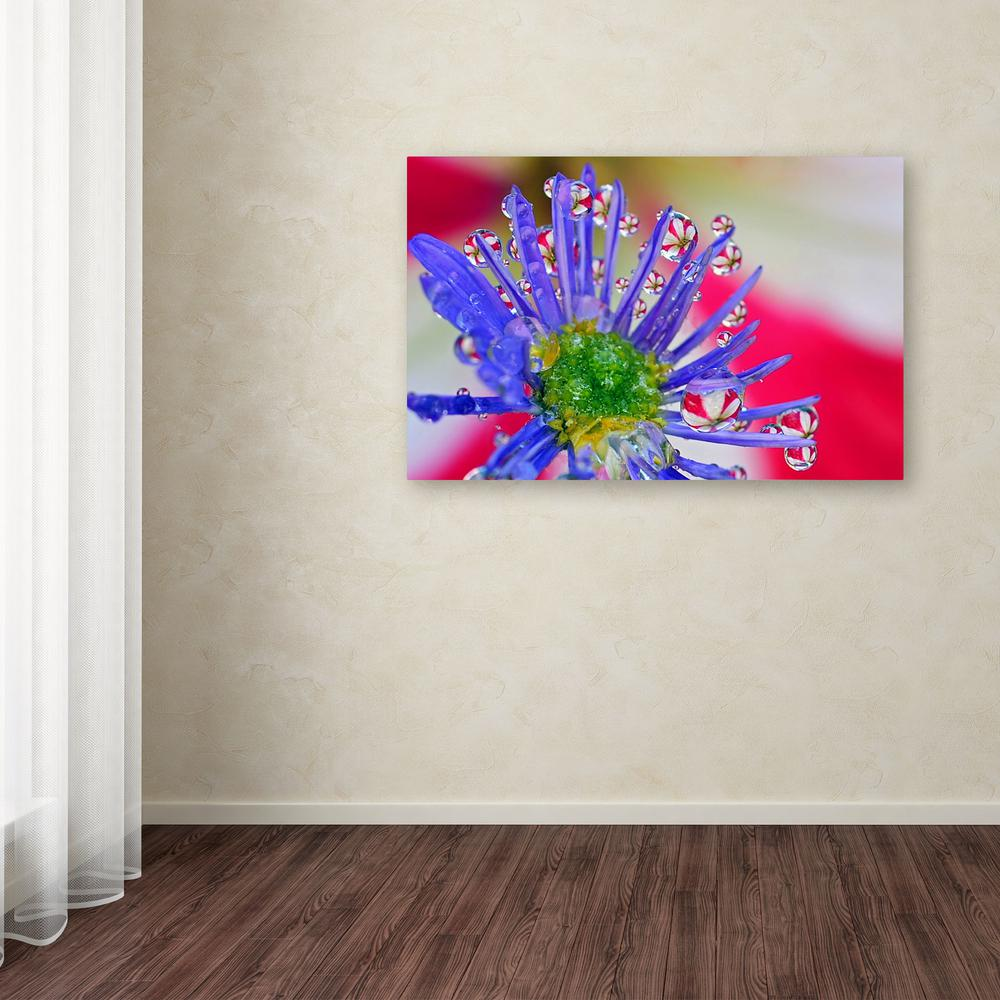 """22 in. x 32 in. """"Pixie Christmas Tree"""" by Steve Wall"""