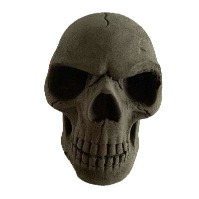 Skull Charcoal Briquettes (6-Pack)