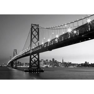 Superb Internet #204414561. Ideal Decor 100 In. X 144 In. San Francisco Skyline Wall  Mural Part 10