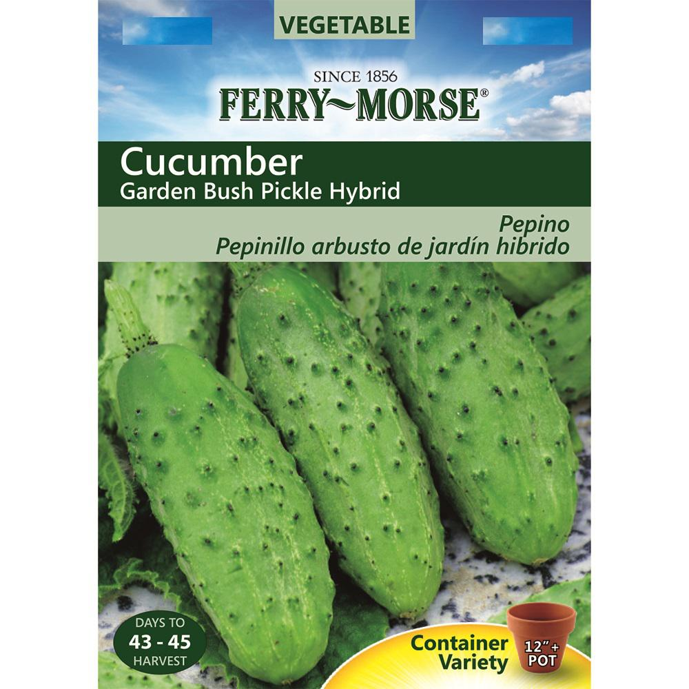Ferry Morse Cucumber Garden Bush Pickle Hybrid Seed 9513   The Home Depot