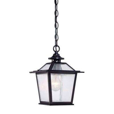 Salem Collection 1-Light Matte Black Outdoor Hanging Ceiling Light