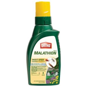 MAX Malathion 32 oz. Insect Spray Concentrate