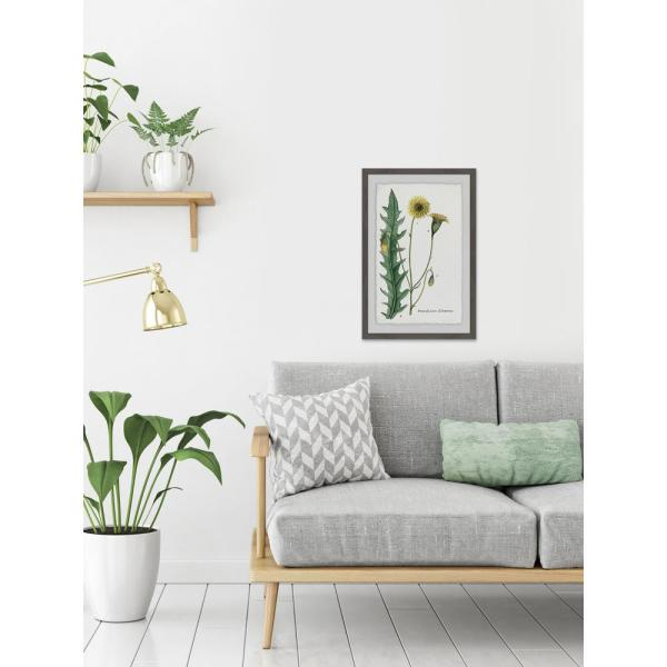 24 in. H x 16 in. W ''Dandelion'' by Marmont Hill
