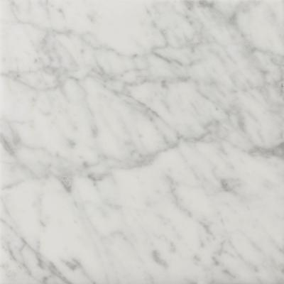 Bianco Gioia 18 in. x 18 in. Marble Floor and Wall Tile