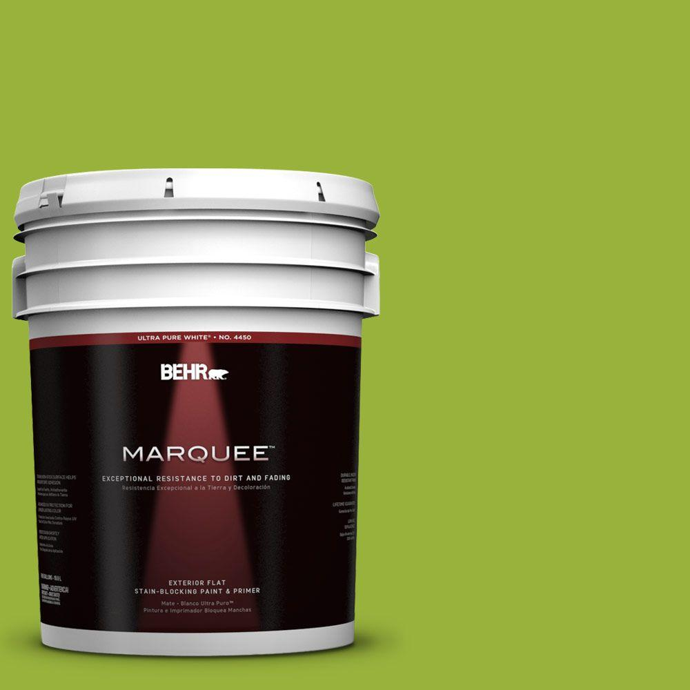 BEHR MARQUEE 5-gal. #410B-7 Bamboo Leaf Flat Exterior Paint