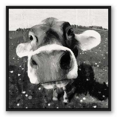 """30 in. x 30 in. """"Cow Close Up Black Floating Framed"""" Printed Framed Canvas Wall Art"""
