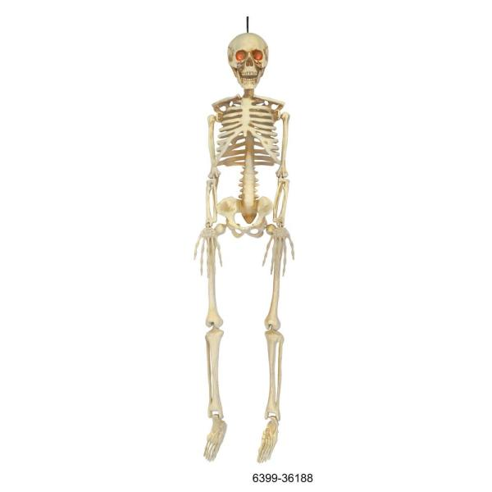 3 ft LED Hanging Skeleton