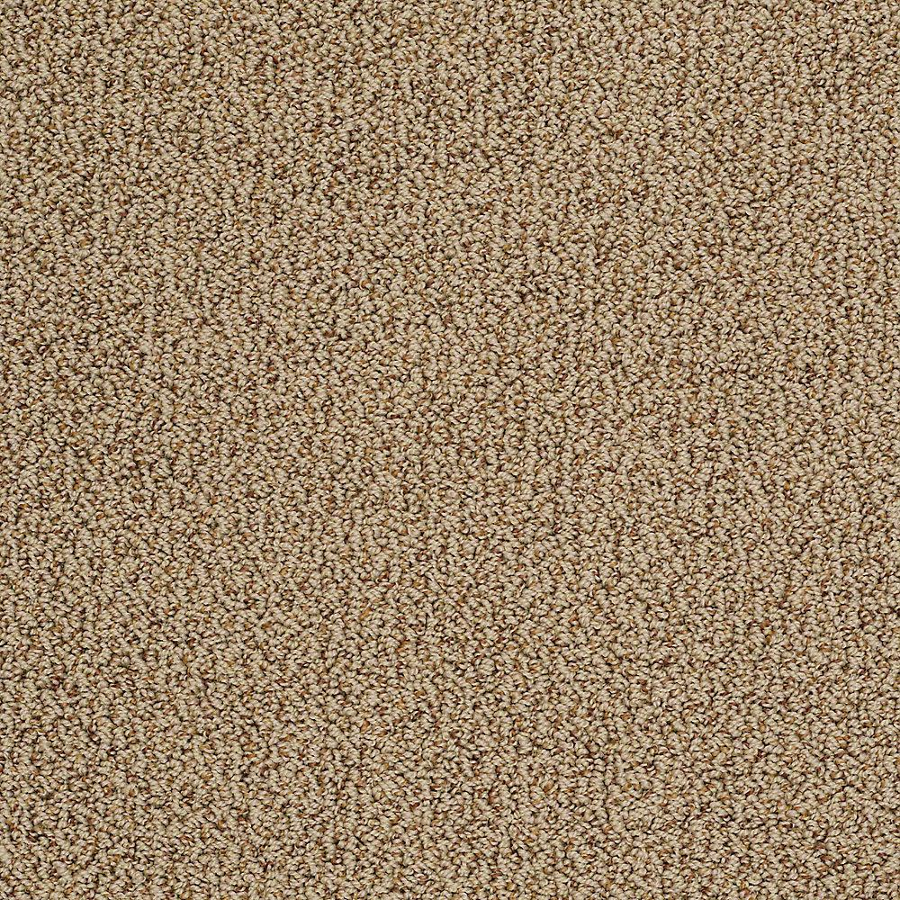 Home Decorators Collection Carpet Sample Braidley In Color Earth Tone 8 In X 8 In Sh