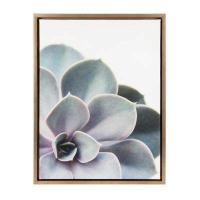 "Sylvie ""Succulent 5"" by F2Images Framed Canvas Wall Art"