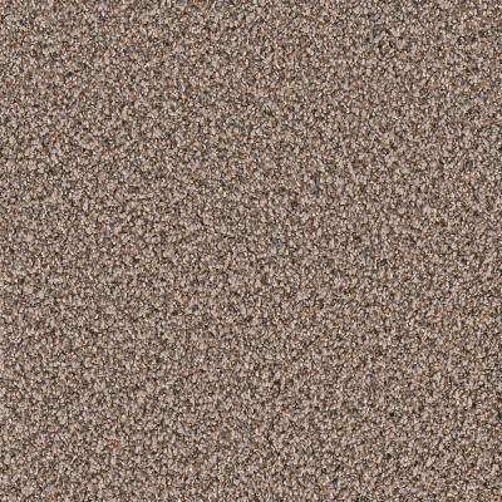 Carpet Sample - Goldsberry II - Color Tony Twist 8 in. x 8 in.