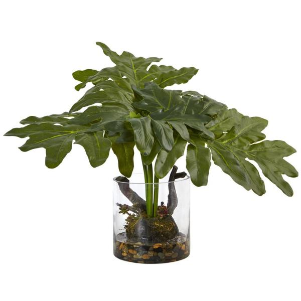 14 in. Philodendron Arrangement with Vase