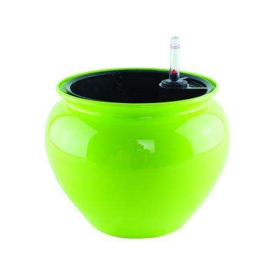 6-1/2 in. Never Dry Jardiniere Planter