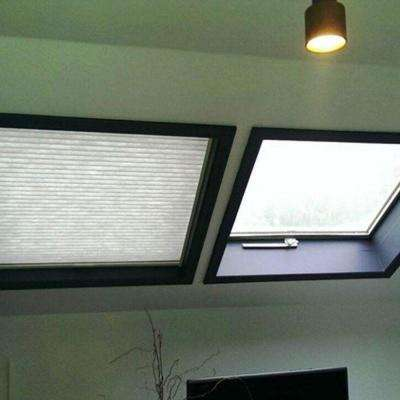 Light Filtering Skylight Honeycomb Shade