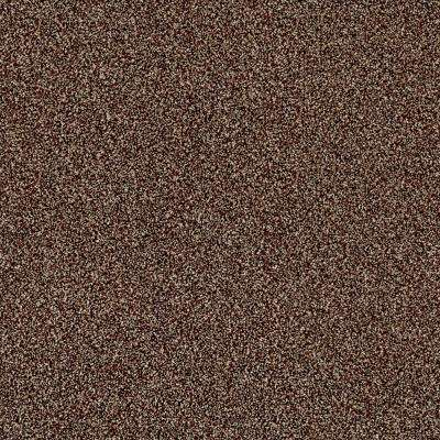 Carpet Sample - Kaleidoscope II - Color Baked Spice Texture 8 in. x 8 in.