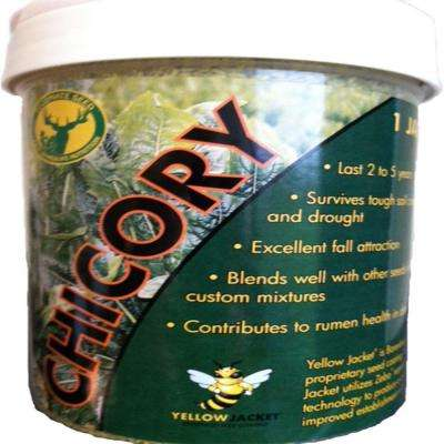 1 lb. Chicory Pounder Professional Wildlife Seed