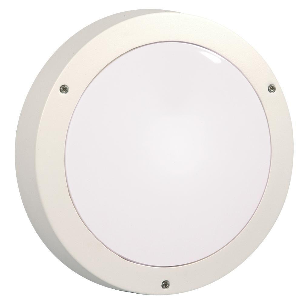 Filament Design Negron 1-Light Outdoor White Wall Light