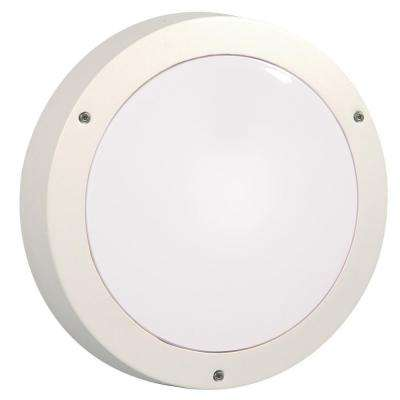 Negron 1-Light Outdoor White Wall Light
