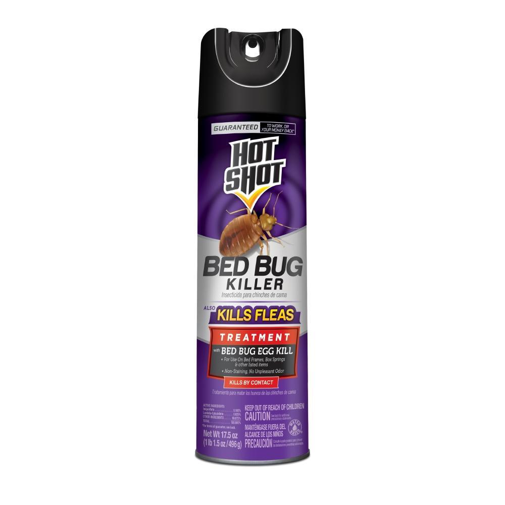 17.5 oz. Bed Bug and Flea Killer Aerosol Spray