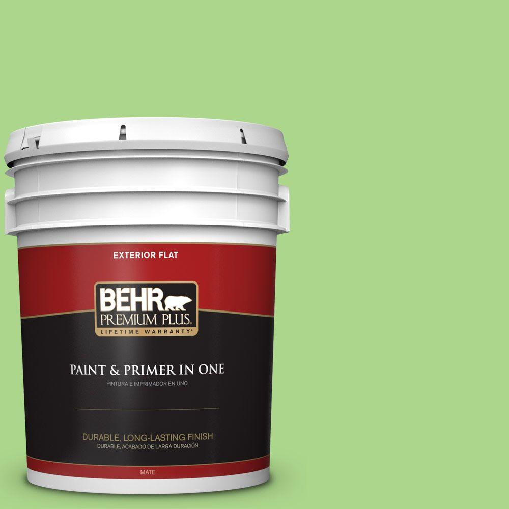 5-gal. #430B-4 Peas in a Pod Flat Exterior Paint